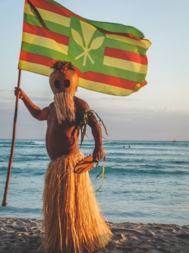 Hawaii vakantie optredens-2