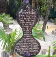 Mexico Tulum yoga text