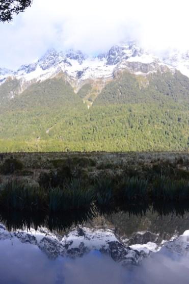 Milford Sound tip nieuw zeeland
