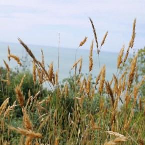 Etretat normandie kust