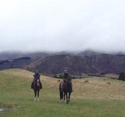 Paardrijden queenstown tip nieuw zeeland
