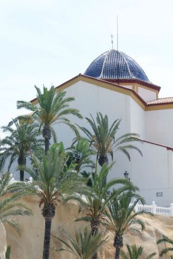 Palmbomen in Benidorm