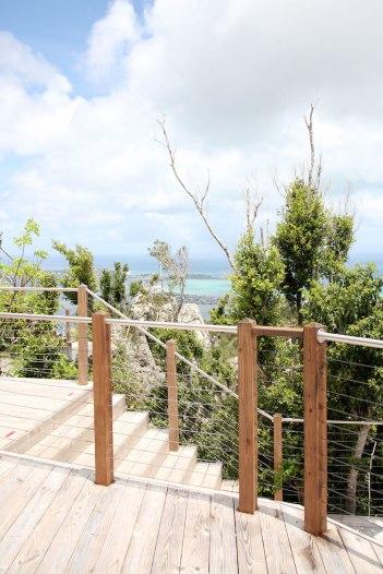 Rainforest-adventures-uitzicht