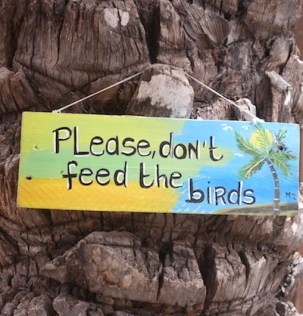 Rif fort please don't feed the birds curacao