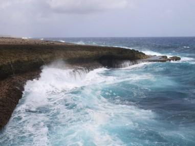 Shete Boka park zee