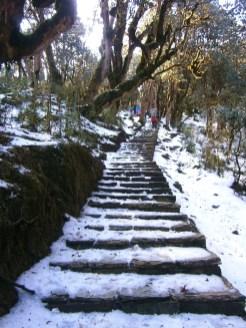 trekking in de sneeuw nepal