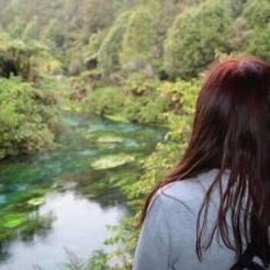 Te waihou blue spring nieuw zeeland