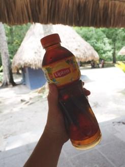 Tikal Guatemala meenemen tips