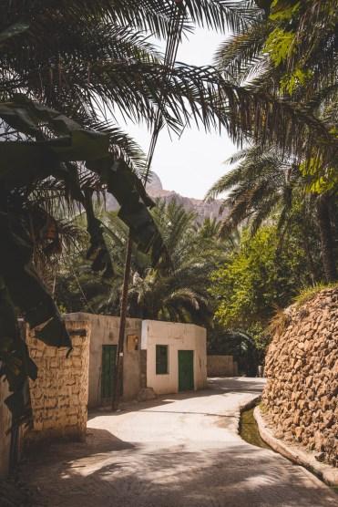 Wadi Tiwi Oman_