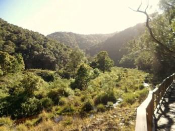 garden route uitzicht zuid afrika