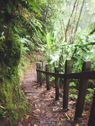 hike pad Catarata del Toro costa rica-3