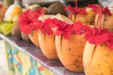 la digue kokosnoot strand