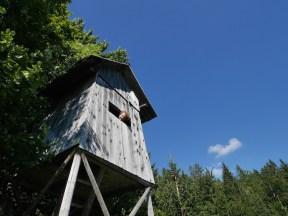 slovenie roadtrip boomhut vogelhuisje