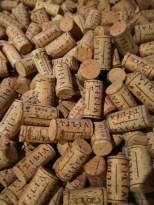 tilia vipava slovenie wijngaard