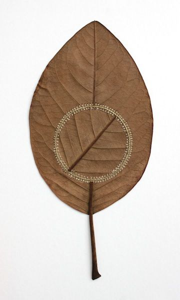 Susanna Bauer crochet leaf sculpture 02