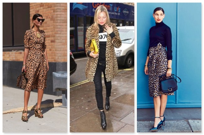 48bb5656d38e A Little Bit Of Leopard - Wears My Money