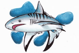 "Shark Sticker Copic Markers on Strathmore Watercolor Paper 3"" x 4"" Sticker"