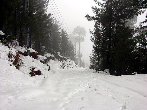 Falling Snow Wallpaper Note 3 Murree Photo By 2 43 Pm 20 Jan 2012