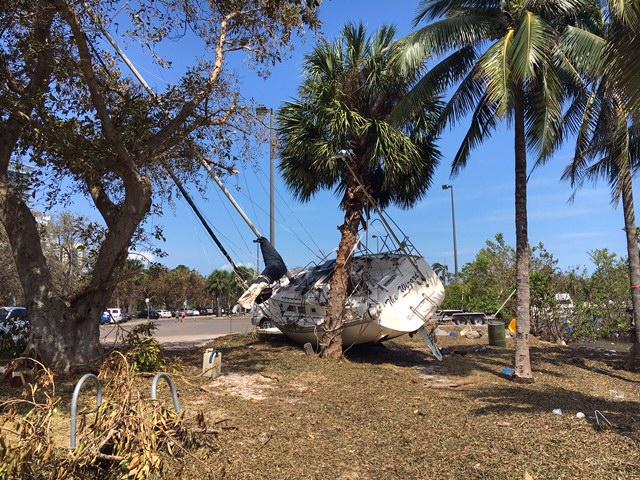 hurricane irma local report
