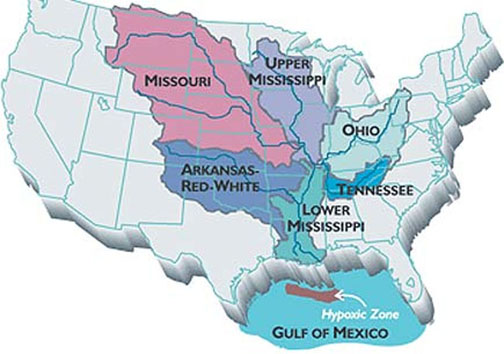 Agricultural run-off is the main source of nitrogen and phosphorus that cause the annual Gulf of Mexico dead zone.