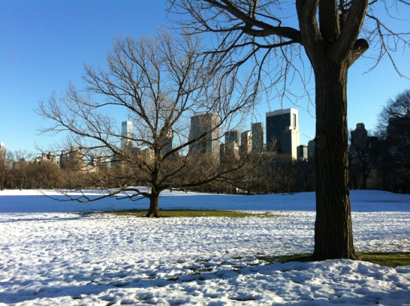 The first patches of green lawn appear on Central Park's Green Meadow as temperatures soar and snow melts.  Image Credit: The Weather Gamut.