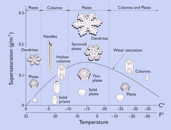 snow-morphology-diagram