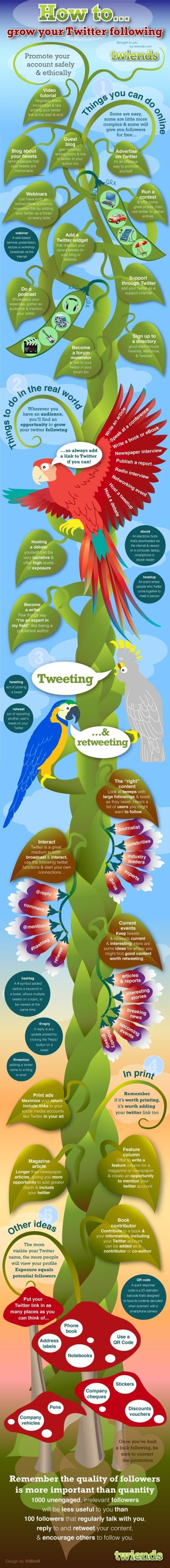 Grow your Twitter following infographic
