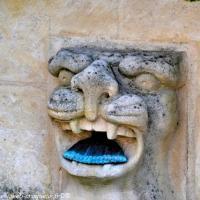 Fontaine de Chevenon - Patrimoine vernaculaire
