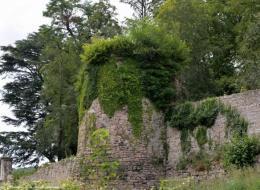 Château fort de Larochemillay