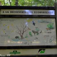 Forêt domaniale de Prémery circuit découverte