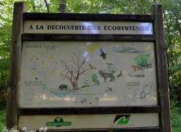Forêt domaniale de Prémery Nièvre Passion