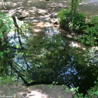 Fontaine de la Vache - Source de la Vache