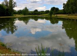 Plan d'eau de Saint Sulpice
