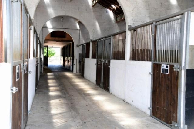 Haras de Cercy La Tour