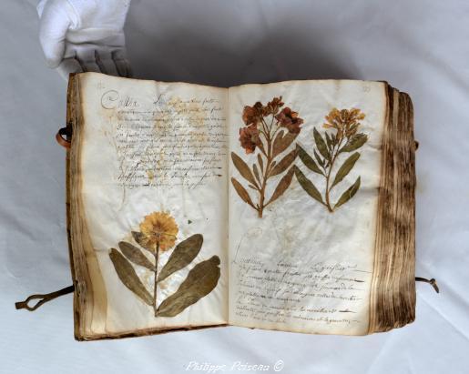 Les Herbiers nivernais
