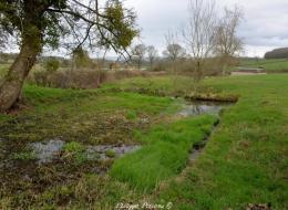 Source et bassin du village de Pazy