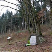 Le maquis Mariaux dans la Nièvre - Les maquis Nivernais