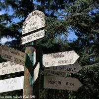 Forêt des Bertranges - Rond point de la Réserve