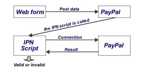 Proceso IPN