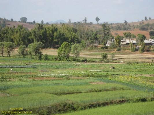 Kyaw Mwe