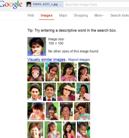 Google image search result