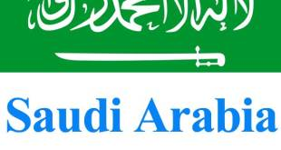 Saudi visa check by passport number