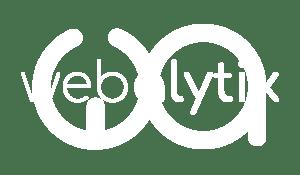 Webalytix Logo 2