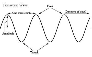 Waves on Strings