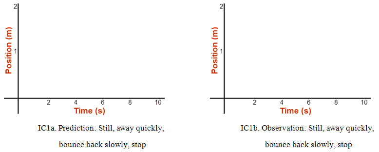 Velocity: A Bat's Eye View of Velocity
