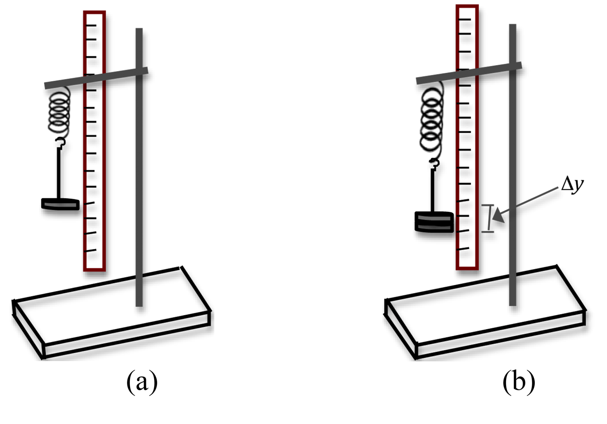 hight resolution of 4a is diagram image of weight hanger on spring suspended from stand next to ruler