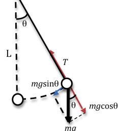 diagram of the pendulum moving length of the string is denoted by l the [ 2083 x 2554 Pixel ]
