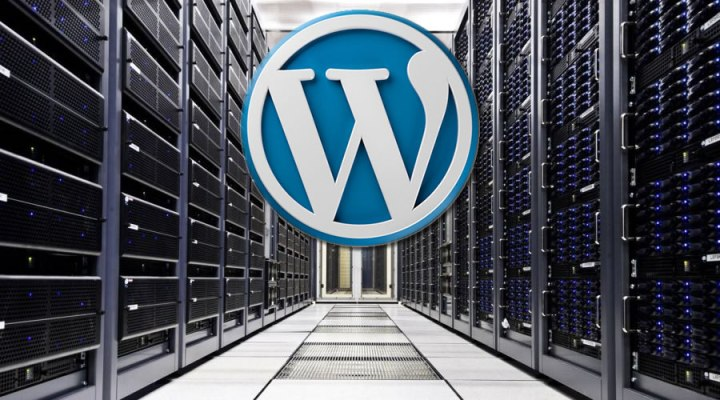 This image has an empty alt attribute; its file name is WordPress-hosting-India.jpg