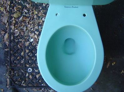 bowl sitting toilet