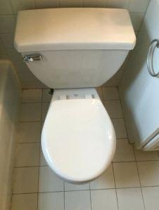 flush toilet